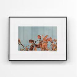 브라운 인테리어 대형사이즈 액자 푸른낙엽