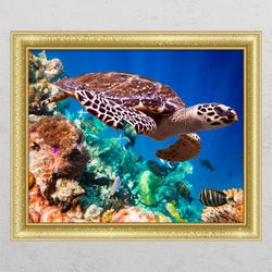cl474-바다거북의여행-창문그림액자