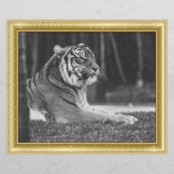 pc675-풍수흑백호랑이1창문그림액자