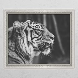 pc676-풍수흑백호랑이2창문그림액자