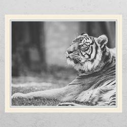 pc678-풍수흑백호랑이4창문그림액자