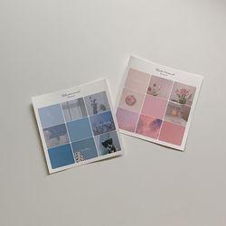 Color Concept Mood ( Pink & Blue )