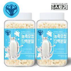 WPC 농축유청단백질분말 300g X 2통