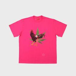 마리화닭 핑크