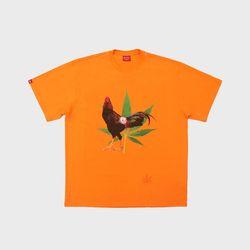 마리화닭 오렌지