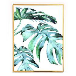 나뭇잎 인테리어 식물액자 트로피칼 몬스테라 잎 액자