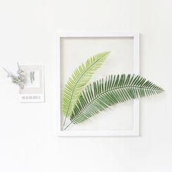 그리너리 소철 야자수 식물액자 인테리어 투명액자
