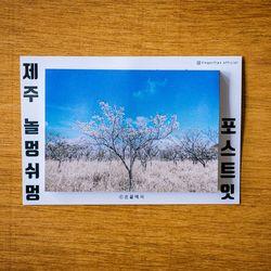 제주 놀멍쉬멍 포스트잇 - 벚꽃나무