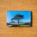 제주 놀멍쉬멍 마그넷 - 나홀로나무