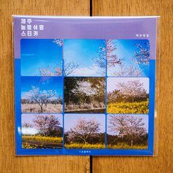 제주 놀멍쉬멍 스티커 - 제주벚꽃