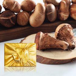 향채움 上품 참송이버섯 1kg 선물세트
