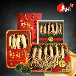 강화초지인삼 2020 추석 명품 수삼 선물세트 모음