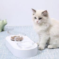 굿초이스 척추 보호 고양이 밥그릇