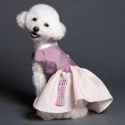매종드독 강아지한복 윤슬 한복