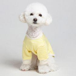 메종드독 강아지옷 데일리케치 옐로우