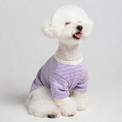메종드독 강아지옷 데일리케치 퍼플