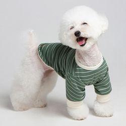 메종드독 강아지옷 데일리케치 그린
