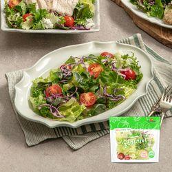 국내산 채소만 담은 샐러데이 샐러드 85g x 6팩