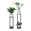 바우하우스 더블 철재 화분스탠드 long + 공기정화식물 1종