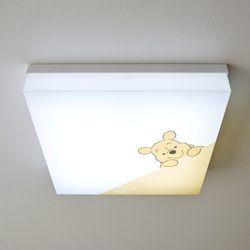 푸 LED 방등 50W(A타입) 사각