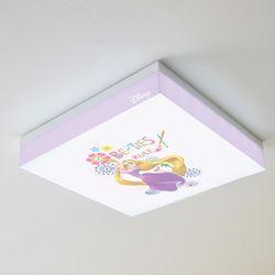라푼젤 LED 방등 50W(A타입) 사각