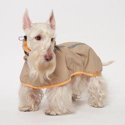 Gold Kiwi Rain Coat 중형견 - L 2L 3L Size