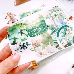 그린 감성 3cm 사각 스티커 (6 Cut Sticker)