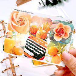 오렌지 감성 3cm 사각 스티커 (6 Cut Sticker)