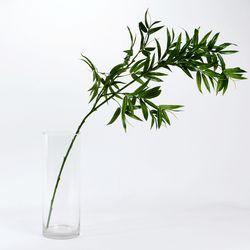 대나무가지 L 플로랄S