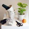 공기정화식물 슬릿화분 분갈이 키트 DIY (기본키트)