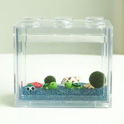 심플 바다 국산 마리모 키우기 DIY 세트-마리모(대)