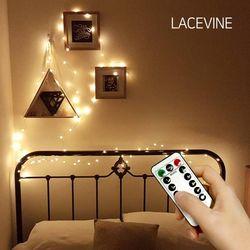 레이스빈 LED 리모콘 와이어 전구 100구 USB형