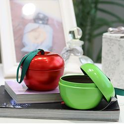 애플 틴 케이스 2color