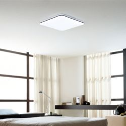 LED 아이린 방등 50W