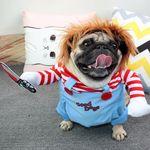 처키 코스프레 사탄의 인형 강아지옷 고양이 코스튬