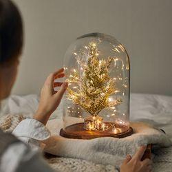 크리스마스 풀세트 투명 유리돔 노엘 전구포함