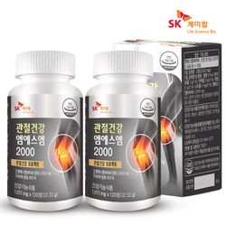 [SK케미칼] 관절건강 엠에스엠2000 120정x2개(4개월)