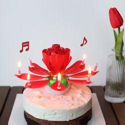멜로디 연꽃초 생일축하 폭탄초 회전초 인싸 촛불