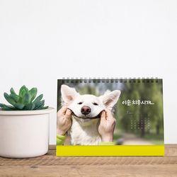 2021년 탁상용달력 강아지 고양이 달력 동물달력 캘린더