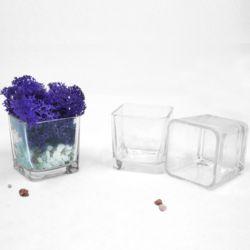 인테리어 미니 유리화분 다육이 꽃 식물 분갈이 화분
