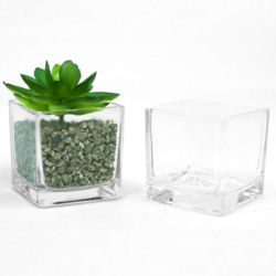 인테리어 화분 다육 꽃 식물 스칸디아모스 유리 화분