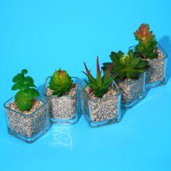 미니 조화 모음 다육식물 인테리어 꽃 유리 화분세트