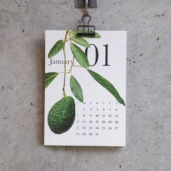 [2021 아트 캘린더] Botanical