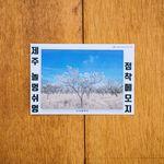 제주 놀멍쉬멍 점착메모지 - 벚꽃나무
