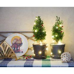 편백나무 크리스마스 생화 트리