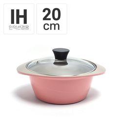 팰러스 IH 인덕션 양수냄비 20cm