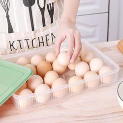 싱싱트레이 24구 계란케이스(그린)