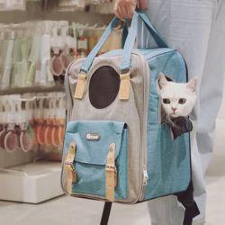강아지 고양이 가방 이동장 집 캐리어 스퀘어 백팩