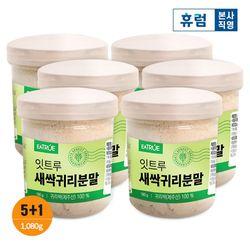 제주산 새싹귀리 뿌리포함 친환경 수경재배 무농약 분말 5+1병