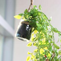 행잉화분잎